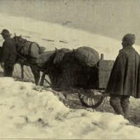 La spesa viveri non manca, malgrado la neve, in «L'Illustrazione italiana», 17 dicembre 1916, n. 51, p. 473, Istituto per la storia e le memorie del '900 Parri E-R.
