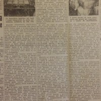 Come e dove nascono le carte annonarie, in «Il Resto del Carlino», 26 ottobre 1941.