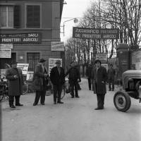 Occupazione da parte dei lavoratori dello zuccherificio di Massa Lombarda (1968). Marina Guerra