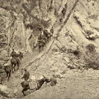 Una colonna leggera di rifornimenti ascende le montagne per giungere alla gran guardia, in «L'Illustrazione italiana», 29 agosto 1015, n. 35, p. 176, Istituto per la storia e le memorie del '900 Parri E-R.