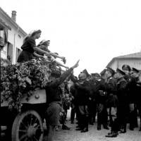 """Donne in abiti tradizionali offrono grappoli d'uva al Duce nella campagna parmense, visita di Mussolini a Parma per la consegna della """"Spiga d'oro"""", 8/10/1941, Archivio fotografico Amoretti."""