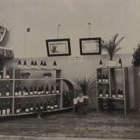 Foto del padiglione amarena Fabbri, in «Bologna. Rivista mensile del Comune», n. 5, maggio 1935.