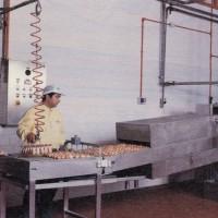 Sgusciatura delle uova meccanizzata
