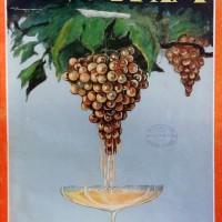 """Enotria"" copertina, 1932"