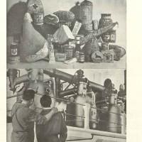 Settembre 1952. 7 mostra delle conserve (archivio  SSICA).