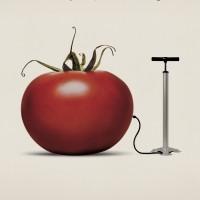 Manifesto sensibilizzazione OGM (1998)