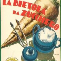 Ottavio Munerati, La bietola da zucchero, Piacenza, Federazione italiana dei consorzi agrari, 1932.