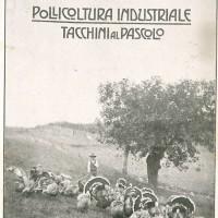 """La copertina della """"Italia agricola"""" del 15 dicembre 1918 dedicata all'allevamento dei tacchini."""