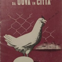 Ufficio propaganda Pnf, L'allevamento della gallina da uova in città, ca 1940.