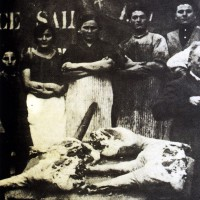 Salumificio Domenico Ferrari, Collecchio, 1920 ca., Museo del Prosciutto - Langhirano
