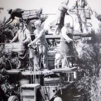 Raccolta frutta con carro semovente, anni '70. Da: A. Ravaioli, C. Casadio, Storia della cooperativa agricola braccianti di Mezzano, Imola 1977