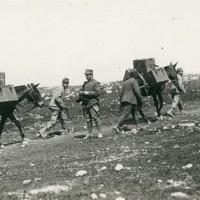 Carso. Trasporto del rancio alle truppe in linea, Museo Civico del Risorgimento di Bologna