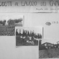 Studenti al lavoro dei campi, 1918, foto in Archivio storico dell'istituto «Pier Crescenzi», Bologna.