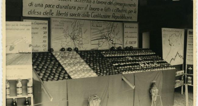 Il boom della frutta in Bassa Romagna nel secondo dopoguerra