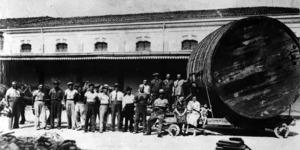 La produzione del vino, anni Trenta