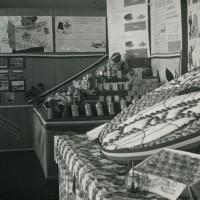 Stand espositivo di frutta [anni '70]. Cooperativa frutticoltori Massa Lombarda