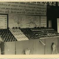 Stand espositivo della Cooperativa frutticoltori di Massa Lombarda inneggiante la pace [anni '70]. Cooperativa frutticoltori Massa Lombarda