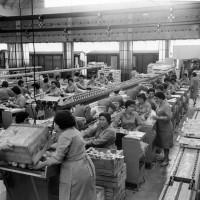 Donne intente alla lavorazione della frutta in stabilimento con adiacenti vagoni frigo per il trasporto merci [anni '70]. Cooperativa frutticoltori Massa Lombarda