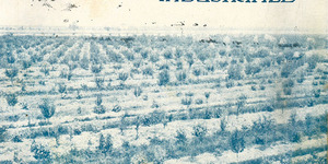 """La copertina della rivista """"Italia agricola"""" del 15 gennaio 1923 dedicato alla frutticoltura industriale."""