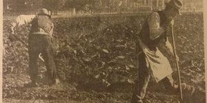 Operai comunali intenti alla vangatura degli orti di guerra ai nostri giardini pubblici. Il terreno accoglierà presto la semina delle patate, in «Il Resto del Carlino», 29 dicembre 1942.