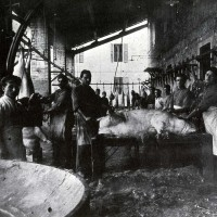 Salumificio Domenico Ferrari, Collecchio, 1920 ca., Museo del Prosciutto - Langhirano