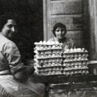 Sgusciatura delle uova manuale