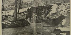 I rifornimenti d'acqua per le truppe in linea in Val Posina, in «L'Illustrazione italiana», 17 marzo 1918, n. 11, pp. 214-215, Istituto per la storia e le memorie del '900 Parri E-R.