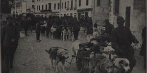 Cani da guerra che portano viveri e munizioni e trasportano feriti in alta montagna, in «L'Illustrazione italiana», n. 24, 16 giugno 1918, p. 472, Istituto per la storia e le memorie del '900 Parri E-R.